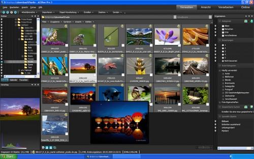 Standartbildschirm ACDSee 3.0