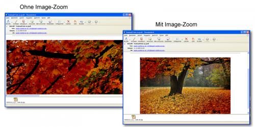Mit und Ohne Image-Zoom